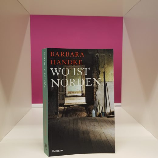 Titel von Wo ist Norden von Barbara Handke
