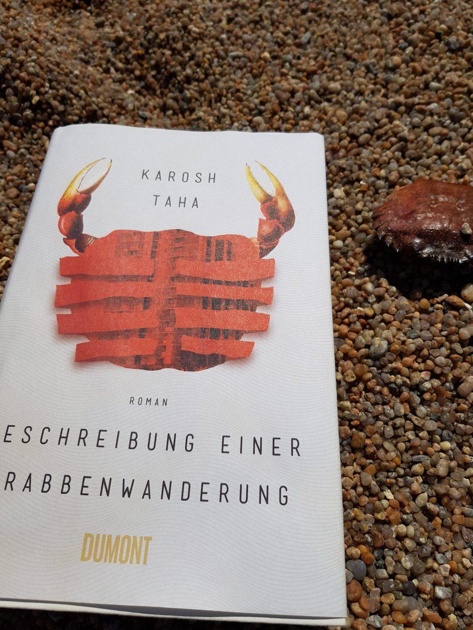 Buchcover Beschreibung einer Krabbenwanderung