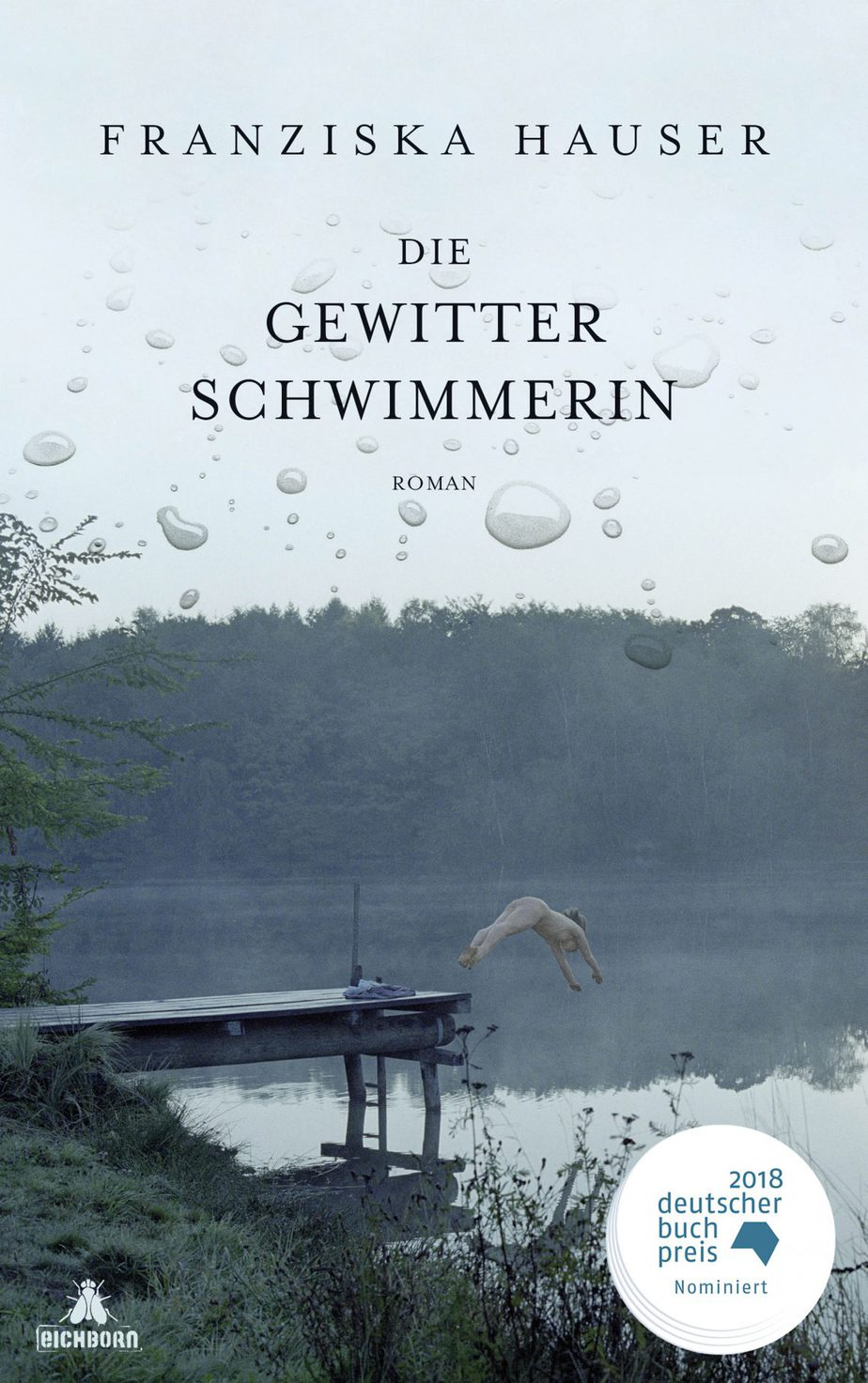 Cover von die Gewitterschwimmerin