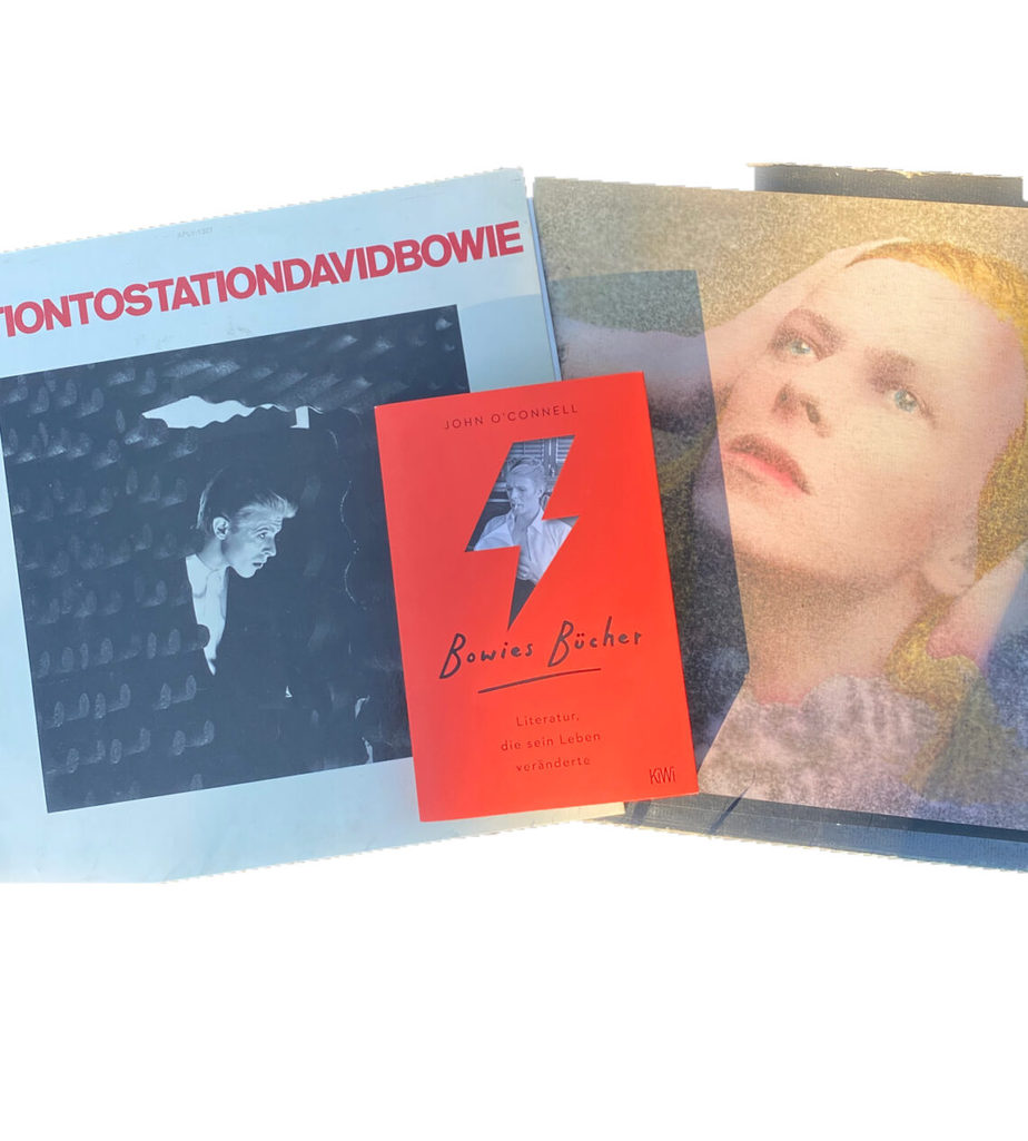 Buchcover Bowies Bücher